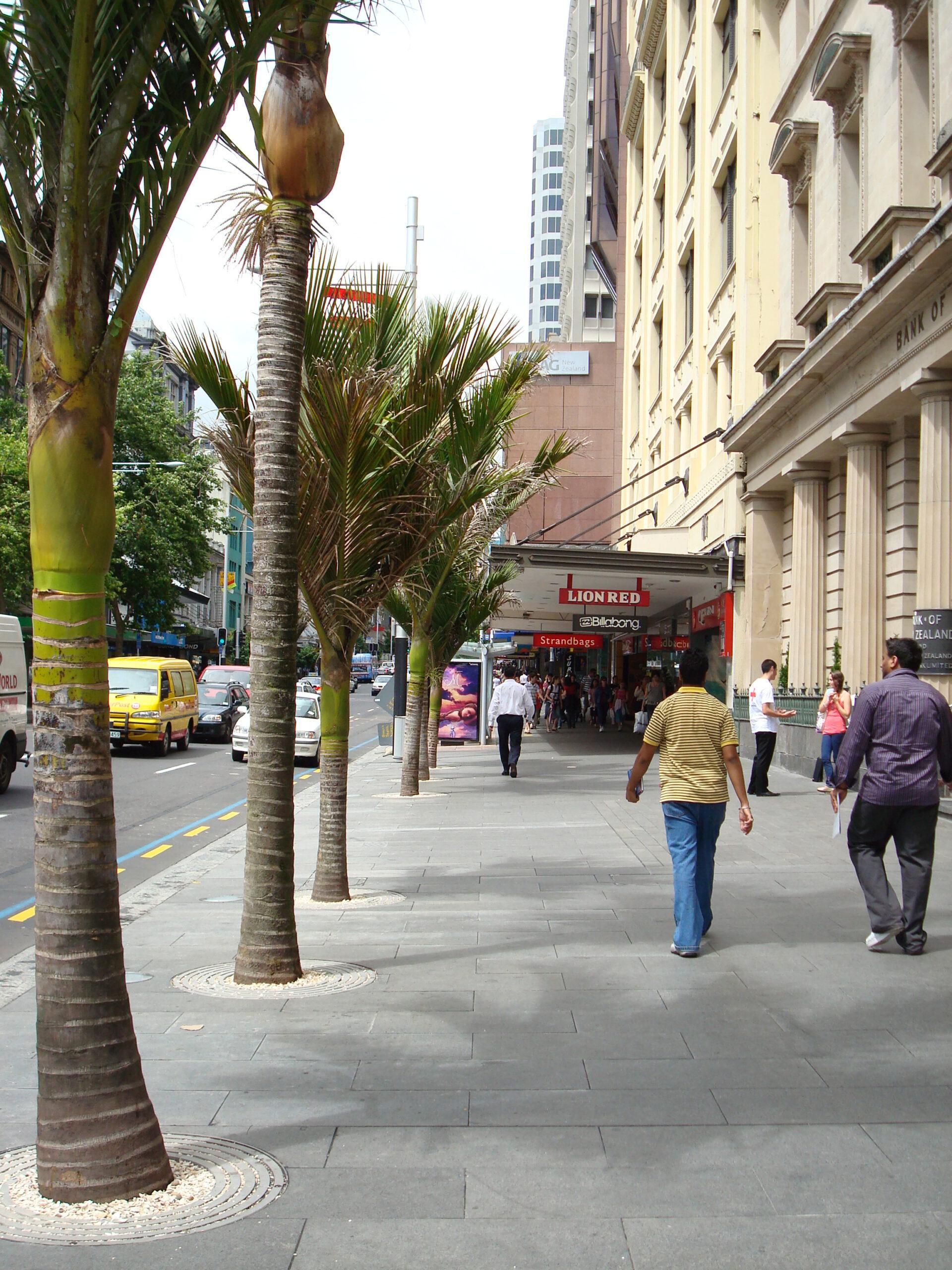 Queen Street Basalt Paving - Auckland